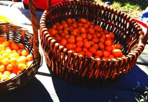 kumquats02