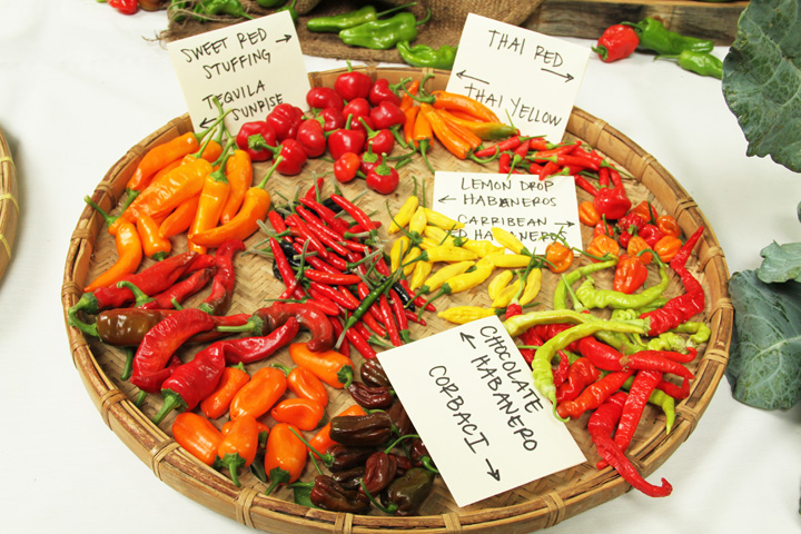 2013 Heirloom Festival – Chiles